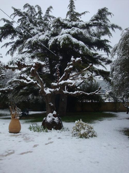 C' est beau l' hiver...