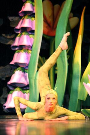 dance ballet thumbelina ballet