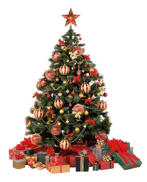 Tubes sapins Noël 4