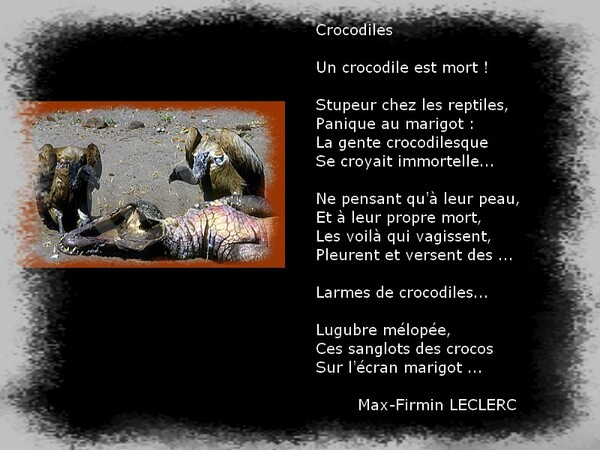 Auteur : Max-Firmin LECLERC