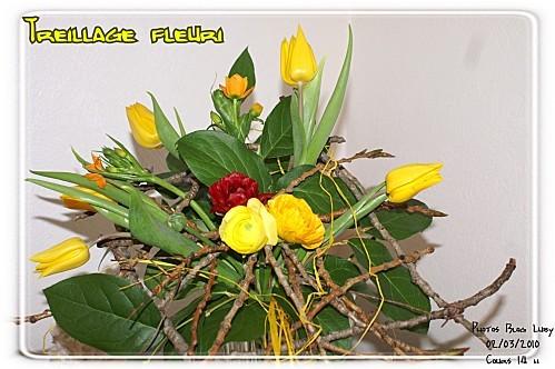 03 02 03 10 treillage fleuri (3)