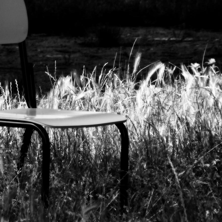 Le jardin du poète.