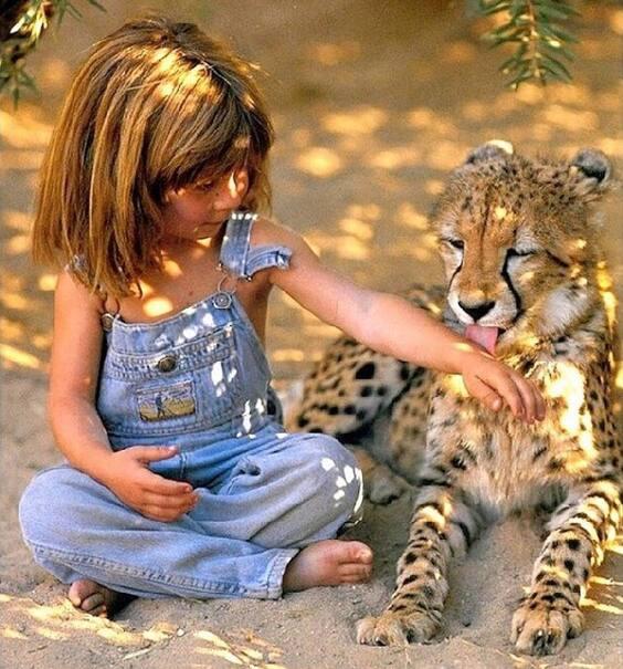Cette petite fille a vécu parmi les animaux sauvages d'Afrique pendant 10 ans