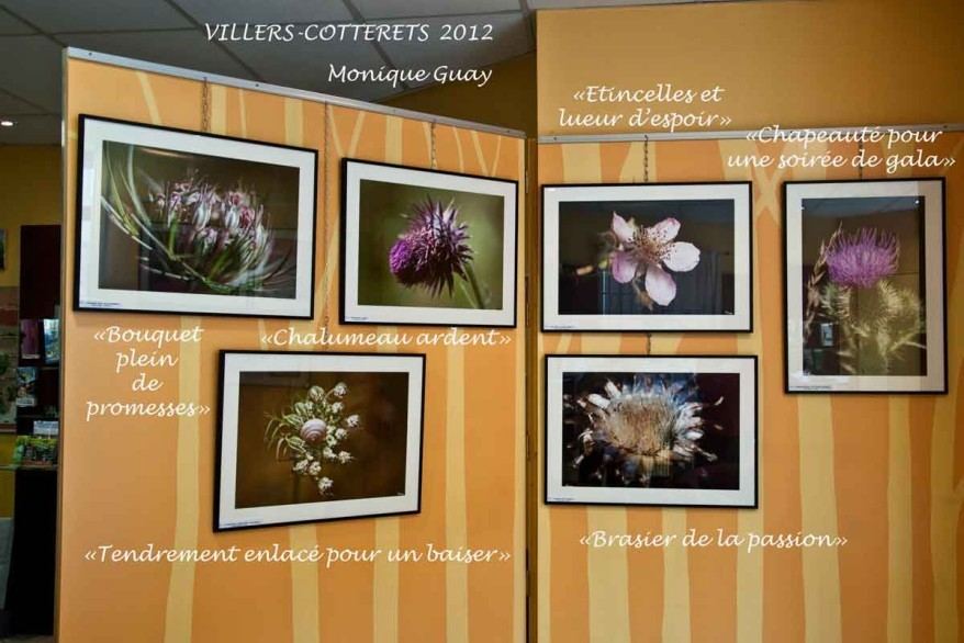 expo-v-c-2012-6399.jpg