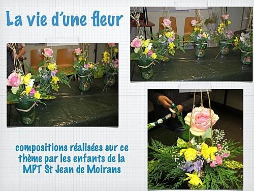 2011 03 02 la vie d'une fleur