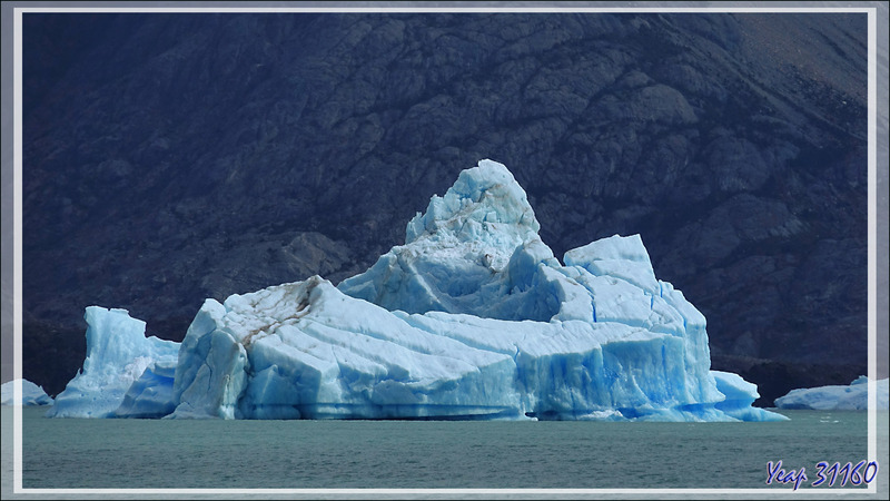 Les superbes icebergs des Glaciers Upsala et Agassiz - Lago Argentino - Patagonie - Argentine