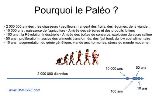 - Vive l'alimentation Paléo (PDF gratuit et libre de droits à télécharger et des sites en français)