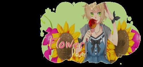 Bannière 2 - Flower Power