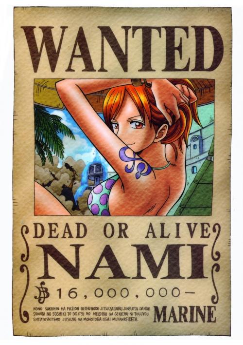 Nami (la chatte voleuse)