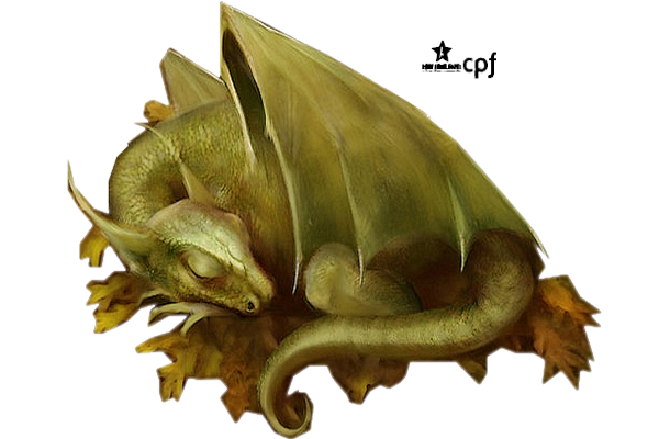 Tubes bébés dragons