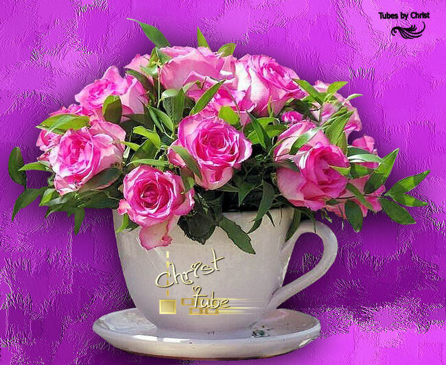 Tasse de Roses.