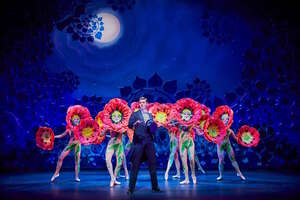 dance ballet the musical 42nd street royal london theatre