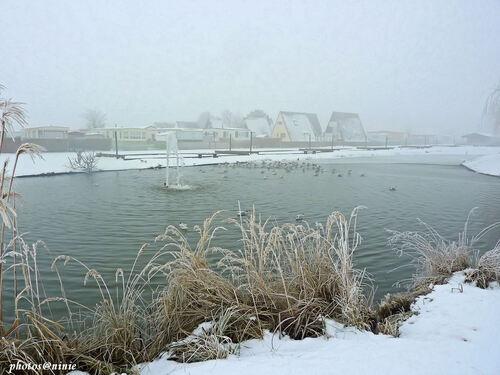 paysage  d'hiver  à Dunepark
