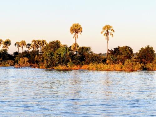 croisière sur le fleuve Zambèze