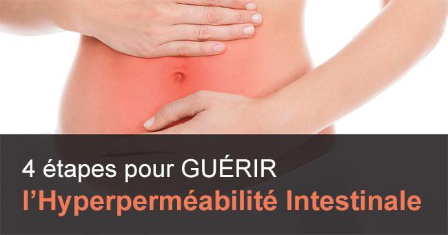 intestin-permeable2