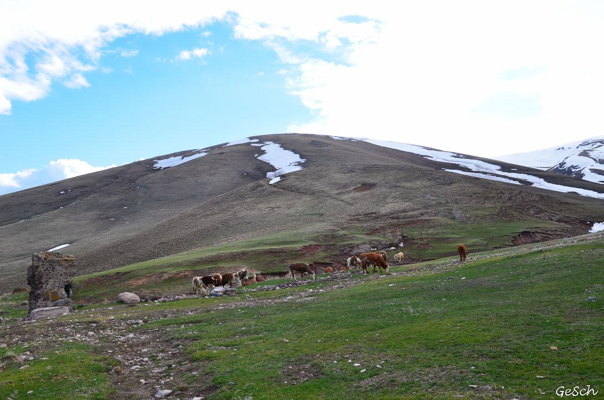 kars ani  bagnayr kozluca arménie turquie schnoebelen