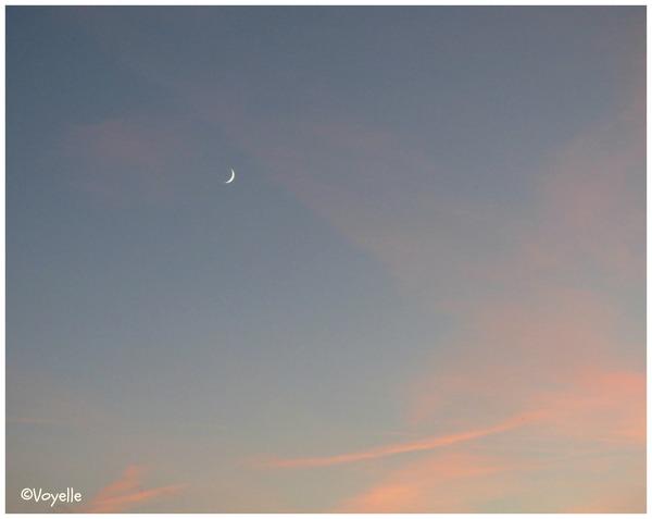 Ö bella la luna...du 15 novembre 2015
