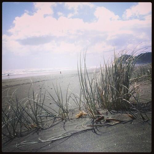 VOYAGE : Black sand beach – à Piha Beach.