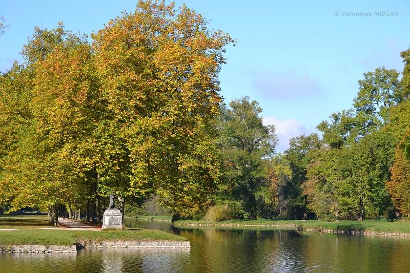 Parc de Rambouillet en Automne