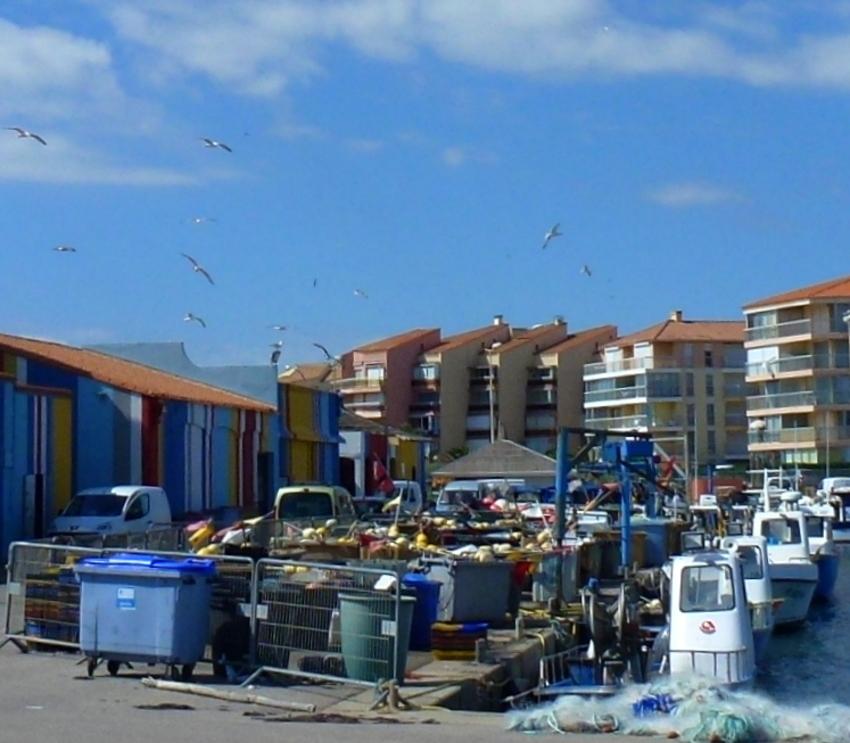 Le port du Barcarès...