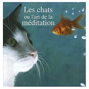 Les chats ou l'art de la méditation :
