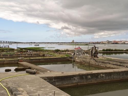 Quelques vues de l'île d'Oléron (photos)