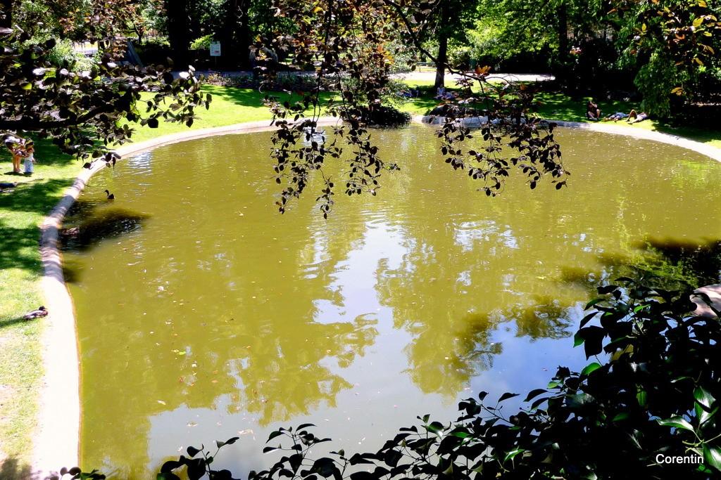 Toulouse : le jardin Royal en juin - Corentin 31