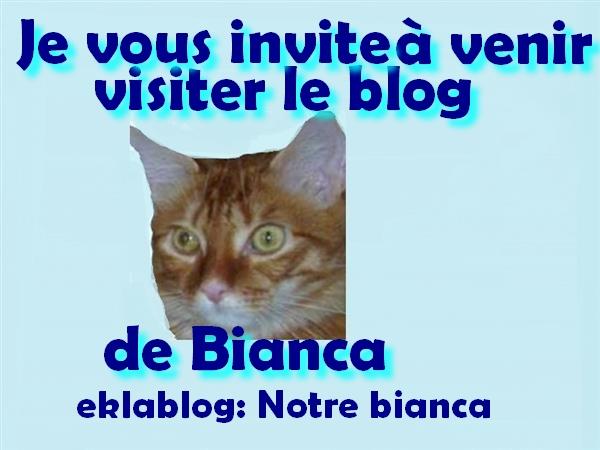 Blog souvenir de Bianca