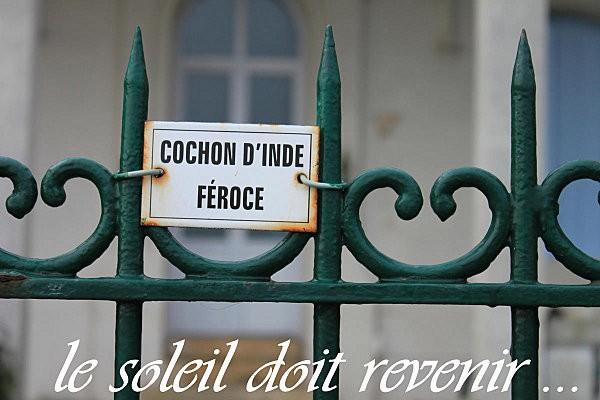 balade de Pontaillac à St Sordelin -11-