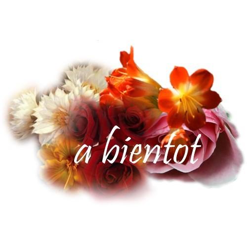 AU REVOIR / BYE BYE / A BIENTOT / SALUT / CIAO !!!