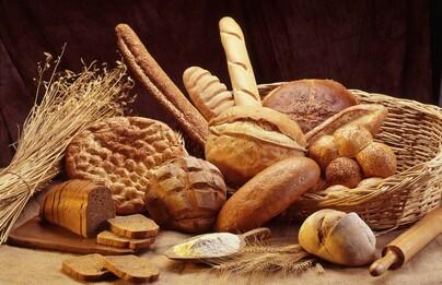 Dégustation de pain bio
