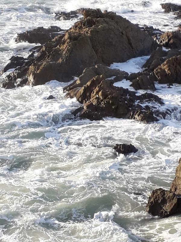 Le bruit des vagues