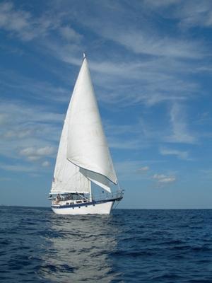 Acrostiches autour de la mer par Zoé et par Corentin
