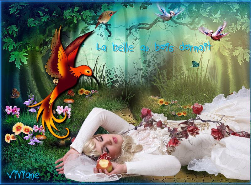 La belle au bois dormait défi de Marjolaine