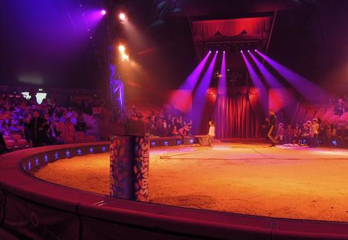 Aller au cirque