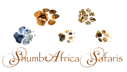 Launching ShumbAfrica Safaris!!!