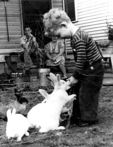 04 - Des histoires de lapins en photo