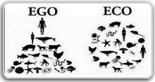 Cheminer, nous informer et tenter de vivre au plus près de nos valeurs d'équité sociale et de respect du vivant ; s'informer, et choisir.