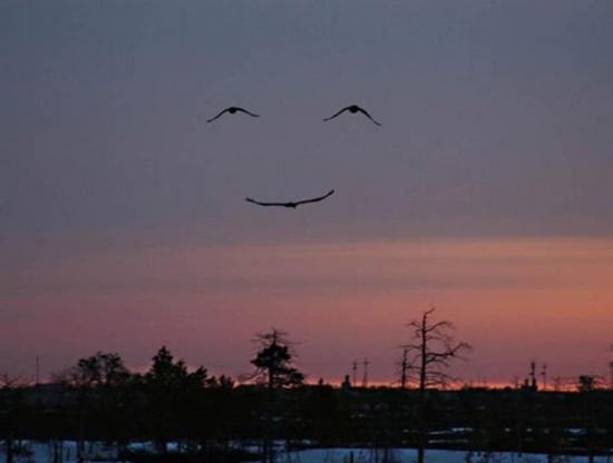 sourire-nature