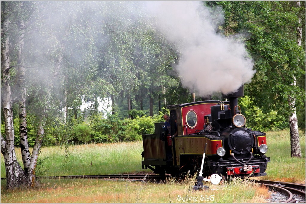 Rillé ... son lac et son petit train