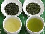 thé japonais 普通蒸し煎茶