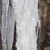 Rotation de fevrier10 neige 016.jpg