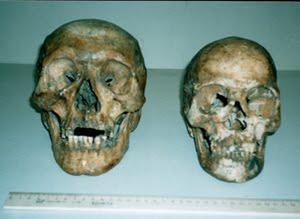 ALMAS des humanoïdes velus de Russie
