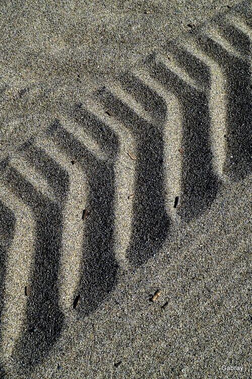 Des traces sur la plage & des fleurs!