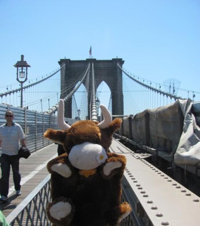 Mirabelle à New York 4