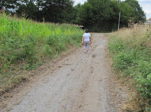 Des chemins ruraux restaurés
