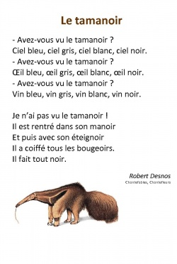 22 poésies de Robert Desnos
