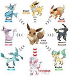 Les évolution de Evoli