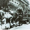 reproduction cheval tirant une voiture tram