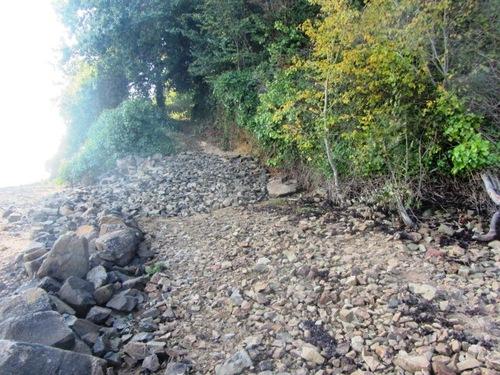 Chemin rénové vers l'île à Bois